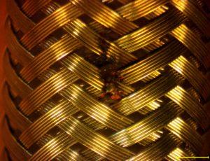 Micro-braid
